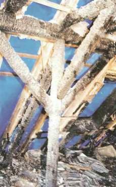 Naturalne materialy izolacyjne a ochrona przeciwpozarowa - ognioodpornosc celulozy przekonuje inwestorow, wladze i straz pozarna - pozar domu w Meckenheim - zgliszcza - derowerk