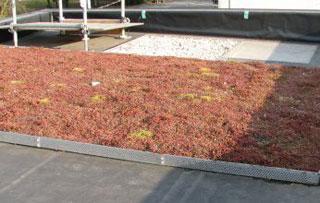 Wplyw doboru materialow izolacyjnych na trwalosc niewentylowanych dachow plaskich - charakterystyka obiektu badawczego - derowerk