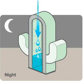 Innowacyjna membrana wewnętrzna SIGA Majrex® osd 0,8 – 35 m, niepozwala wilgoci przedostawać się wniepożądane miejsca
