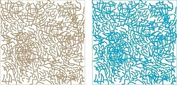 Zdolność magazynowania wilgoci przez celulozę a właściwości cieplne izolacji 
